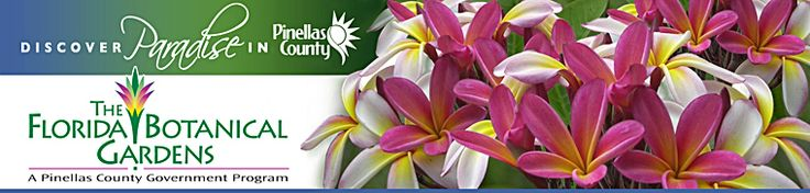 What's in Bloom? Lists of blooming plants calendar in central Florida - via The Florida Botanical gardens