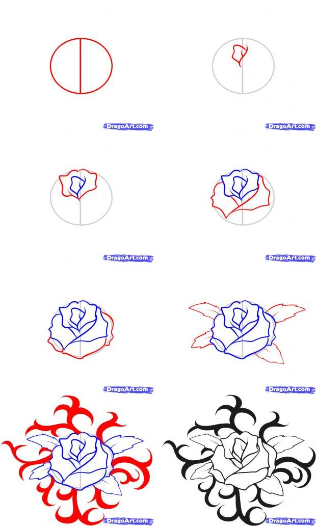 how-to-draw-a-rose-tattoo.png (620×1032)