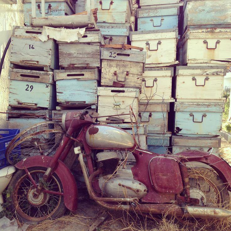 Bees Boxes, Dalyan Turkey