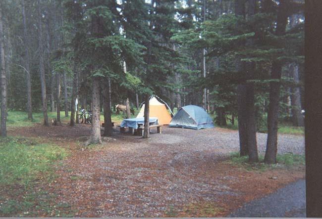 : Revere Buckets, Canadian Rocky, Jasper Ntl, Camping, Parks Journals, Jasper National Parks, Tent Camps, National Parks Inside, Ntl Parks