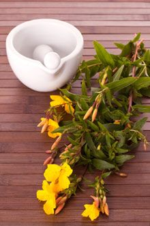 As we age, our bodies get drier inside and out. Evening primrose oil nourishes the skin, hair, nails, even the joints.