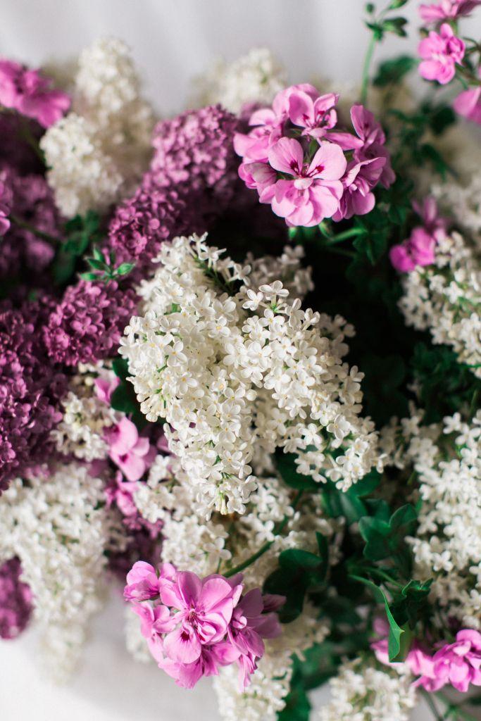 lilac & geranium