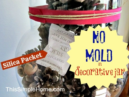 Tip on how to avoid mold in jar, I've been wondering about this...from This Simple Home: Fall Apothecary Jar: Pine Cones and Acorns