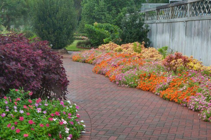Mercer Arboretum Botanical Gardens photoshoot