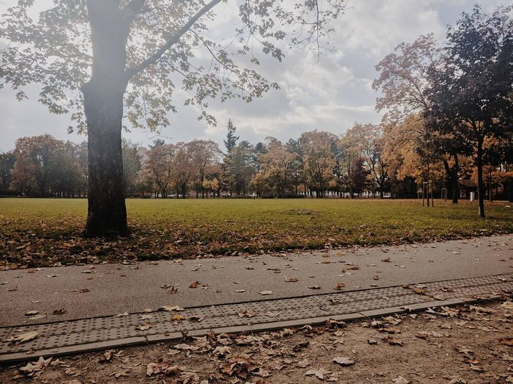 Autumn in park #park #autumn #day