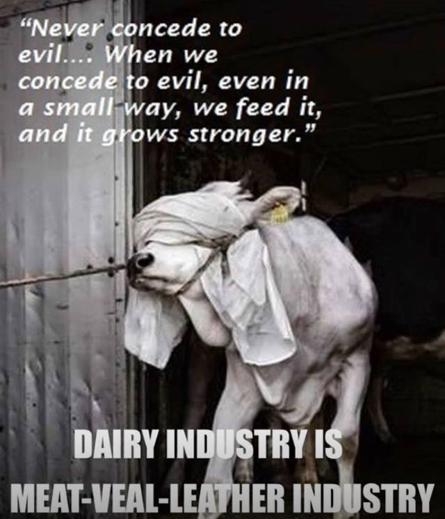 Dairy industry = Meat Industry = Veal Industry = Leather Industry