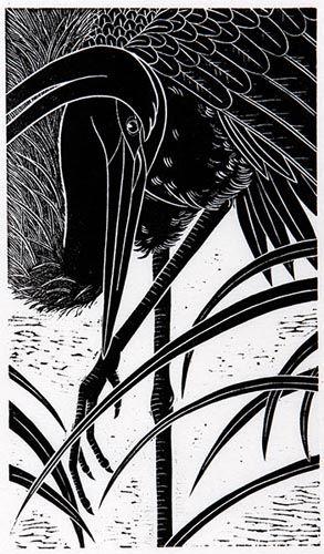 Print by Dona Reed, Rainshadow Arts