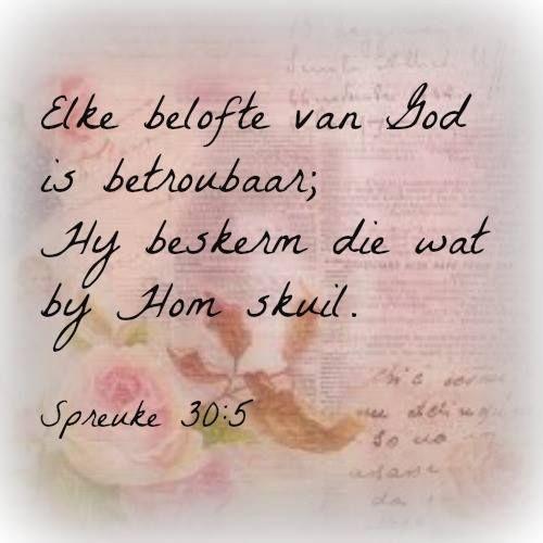 Elke belofte van God is betroubaar; Hy beskerm die wat by Hom skuil. Spreuke 30:5