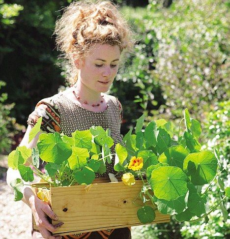 Le Jardinier Débutant: Alys Fowler bringing horticultural society to your very …
