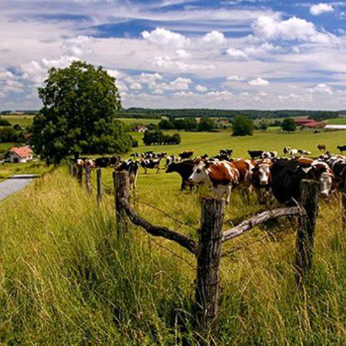 Gulpen, provence of Limburg, The Netherlands. Spent my early childhood years here, lovely!