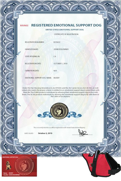 Unique Companion Dog Certification Photo Online Birth Certificate