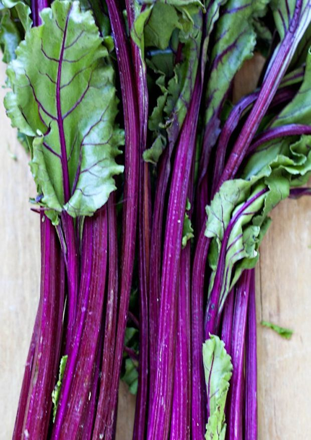 to the beet