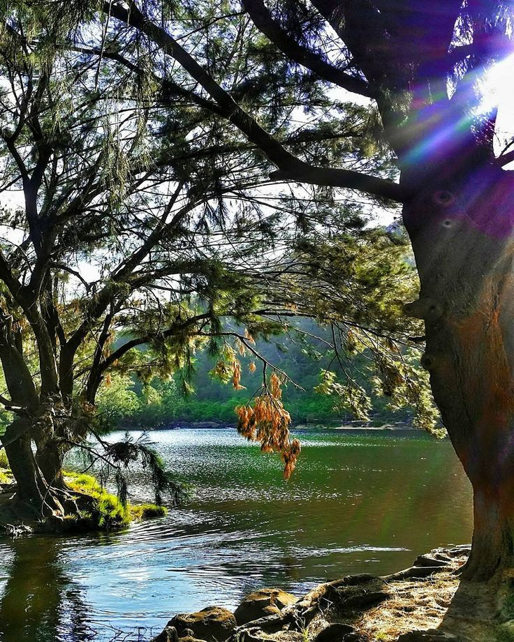 6 Best Swimming Holes Near Sydney | VIVA Lifestyle & Travel