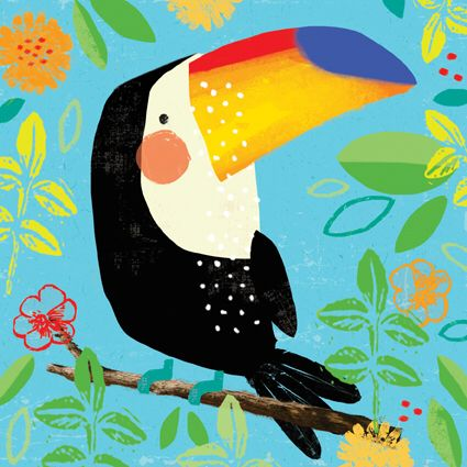 Alex Willmore - toucan