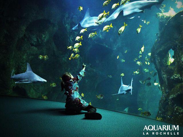 Visiter La Rochelle - Aquarium de La Rochelle