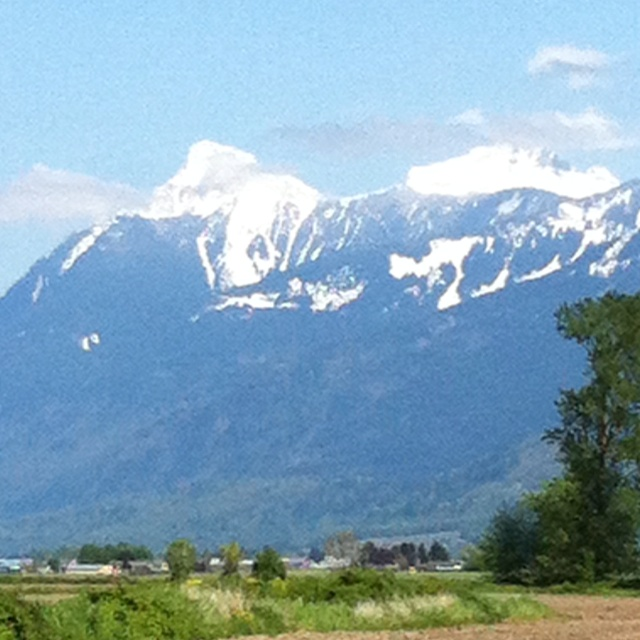 A great view of Mt. Cheam in Chilliwack BC. I'm glad it is sunny today :)