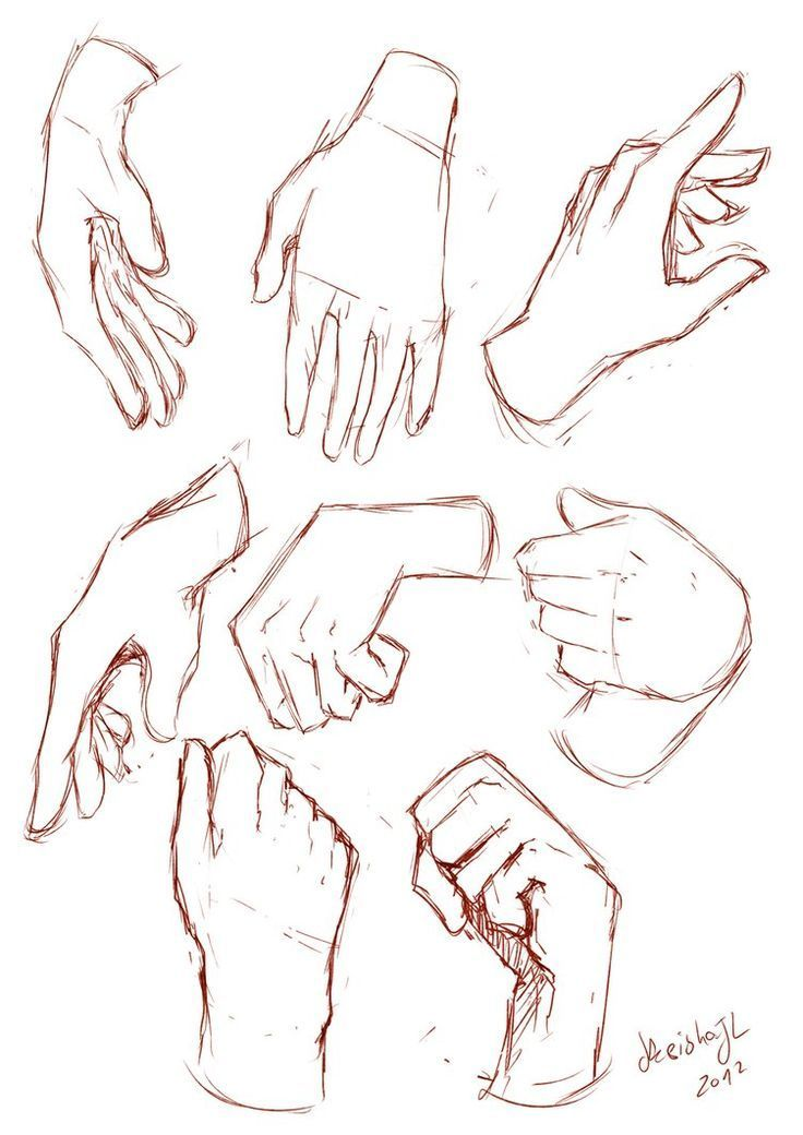 Hand Grip Drawing : drawing, Image, Result, Around, Reference, Sketch,, Drawing, Reference,
