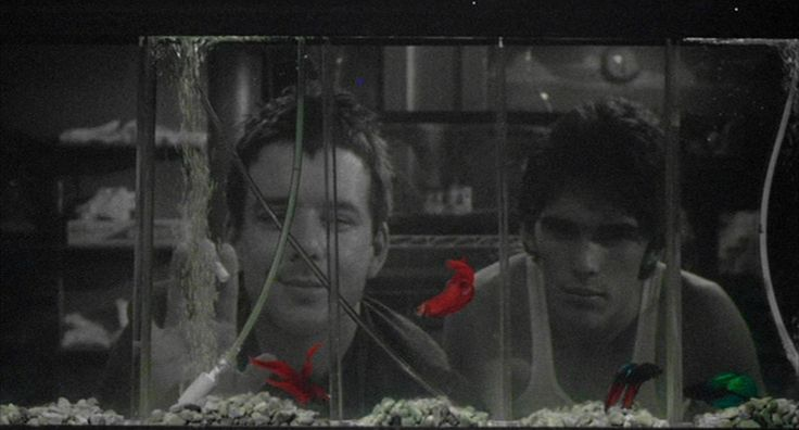 Rumble fish 1983 director francis ford coppola for Rumble fish movie