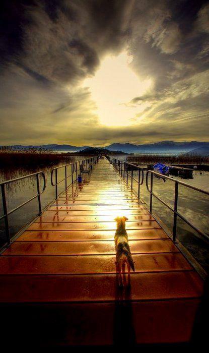 Paradise gate.. Prespes (Florina), Greece / by costas mks