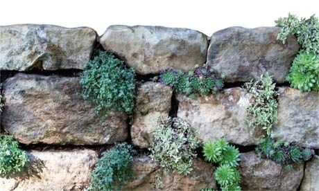Dry stone walls: their cleverness lies in their simplicity. Photograph: Liz Eddison / on TTL Design