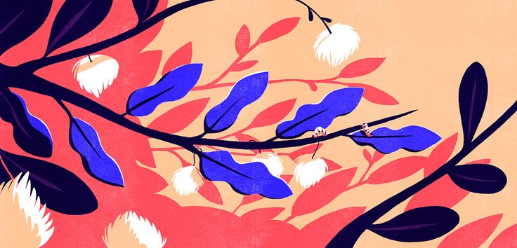 the Caterpillar, the Chrysalis and the Butterfly on Behance