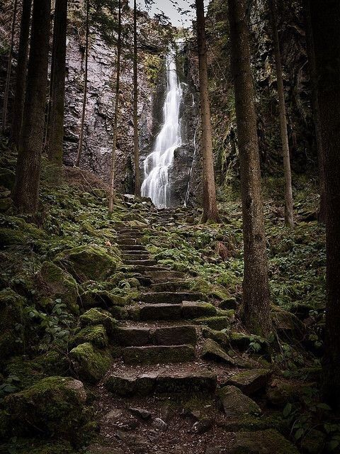 Imagen de waterfall, forest, and germany