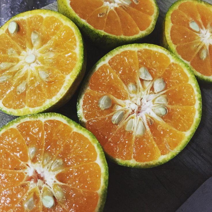 jeruk medan for juice