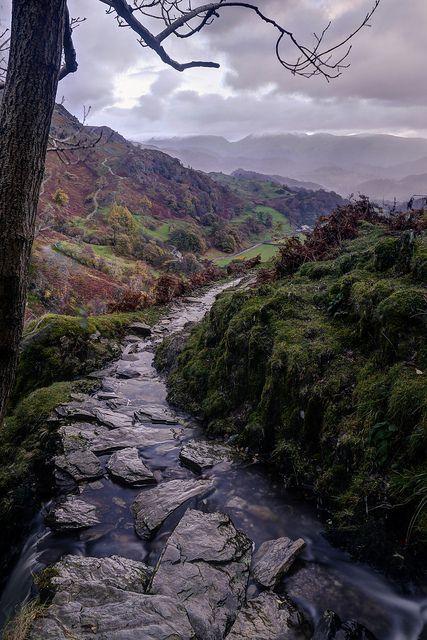 d-vn: Tilberthwaite The Lake District by Tom on Flickr.