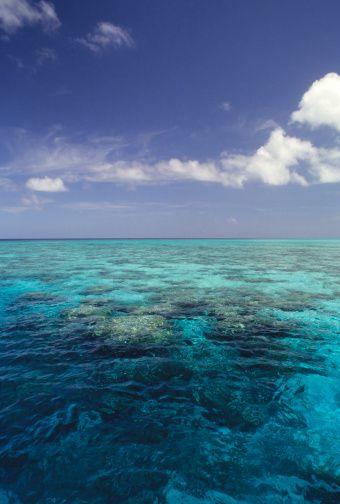 The Great Barrier Reef located in Queensland, Australia