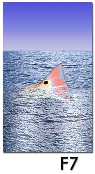 redfish tailing wallpaper