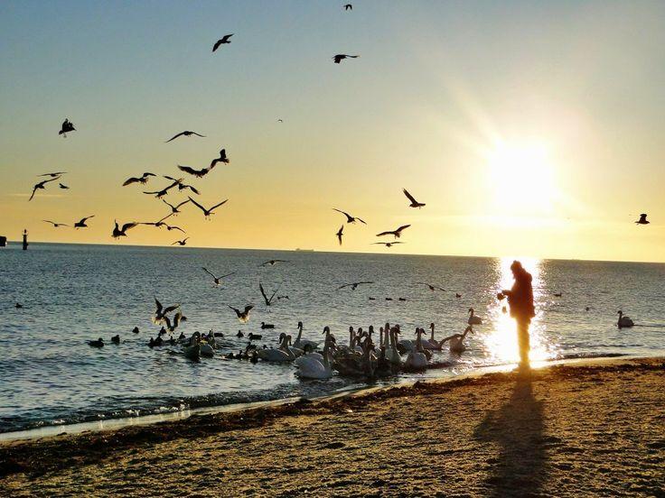 Wspomnienie świtu w Sopocie  Dla wszystkich tęskniących za morzem i słońcem   Memories of dawn in Sopot  For all the people longing for the sea and sun