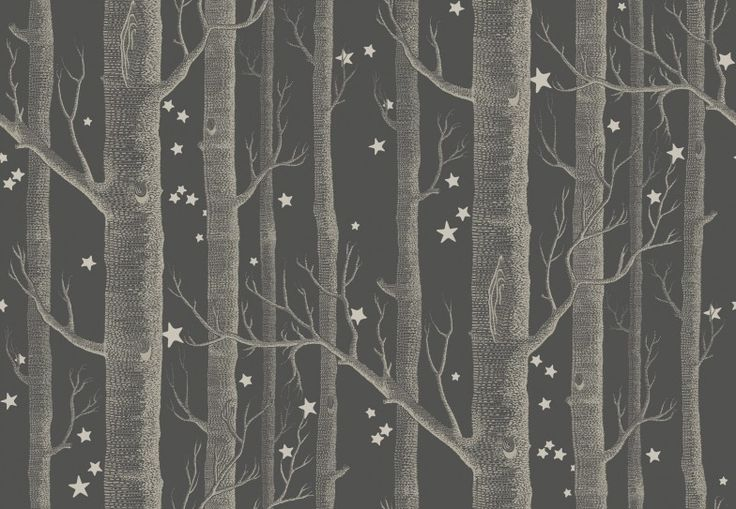 Woods and Stars (103/11053) - Cole & Son Wallpapers - The iconic woods design now ushers you into the most fairytale of worlds, a forest of silver birches and dainty star clusters. Shown here in taupe on charcoal with white stars. Other colour ways available. Paste the wall product. Please request a sample for true colour match.