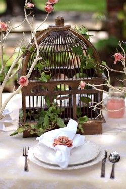 Cage Used As A Centerpiece