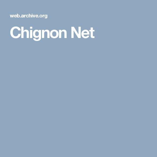 Chignon Net
