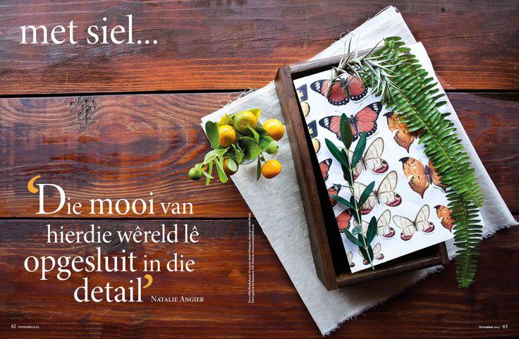 Natuur/ aards, tuin/garden. Fotograaf: Albie Bredenhann. www.leef.co.za