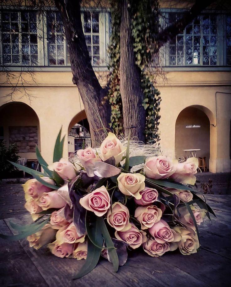 "26 aprecieri, 2 comentarii - Floraria Dorothy's (@florariadorothys) pe Instagram: ""Pink of the day... #birthday #bouquet #pink #roses #cluj #clujnapoca #clujcenter #florariecluj…"""