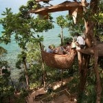 déjeuner romantique perché en haut des arbres