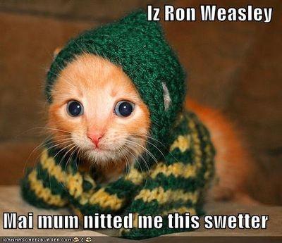 ron weasley  rocks! (best pin ever)