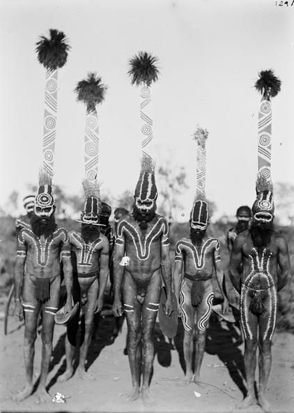 Decorations used during an Arrernte ceremony, Charlotte Waters, Northern Territory, Australia, 1895.