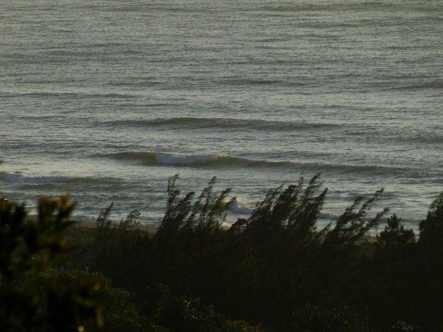 Previsão das ondas da Praia do Silveira   Garopaba Mídia