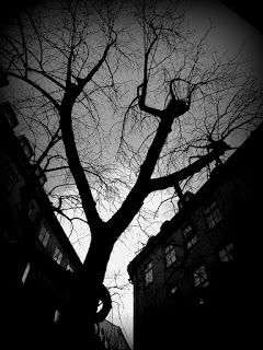 Black and white photography: Spökvandring aka Ghost Walk in Stockholm Old Town