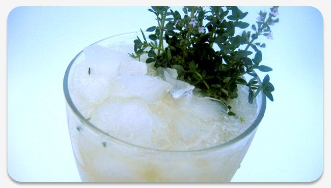 Original Herb and Bitters Cocktails | cocktail hour | Pinterest