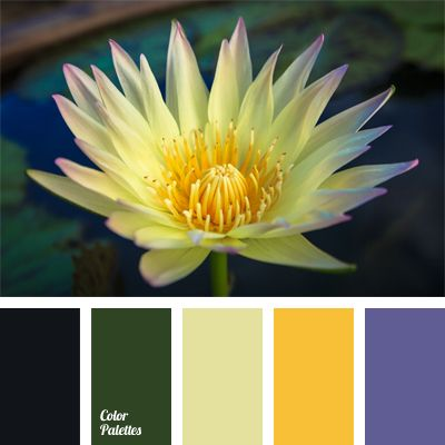 Color Palette #626 Ink door, periwinkle pots