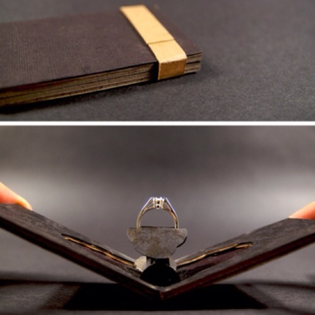 Proposal idea. Books and a diamond.. I'd die.