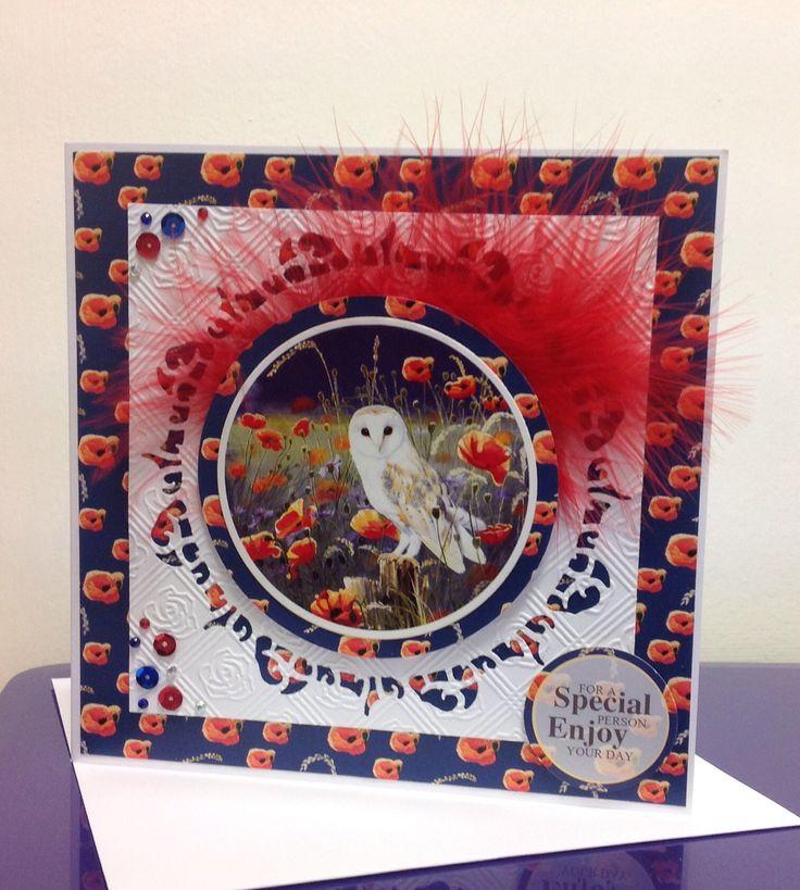Beautiful Barn Owl, Pollyanna Pickering
