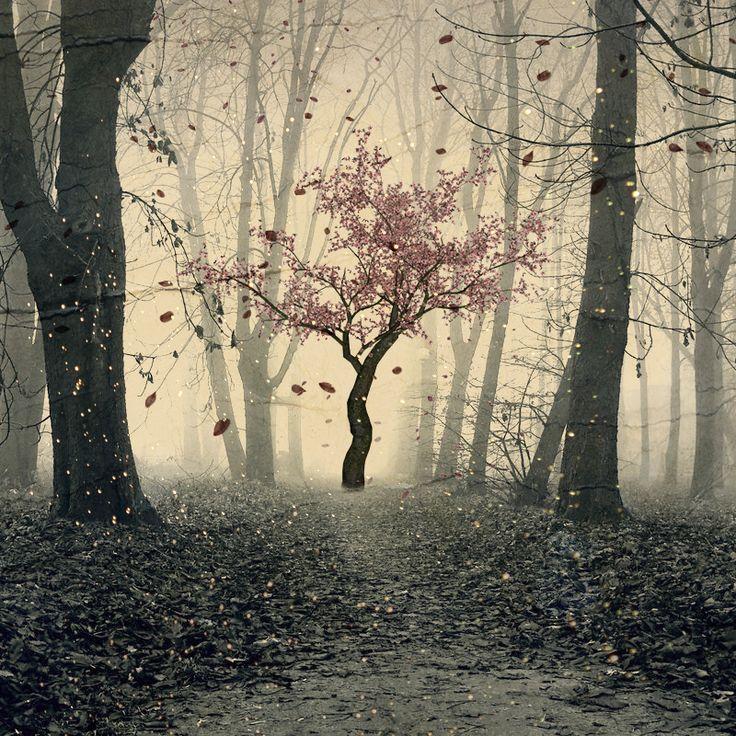 tree by puppet-soul.deviantart.com on @deviantART