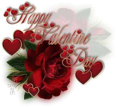 valentine day red rose meaning