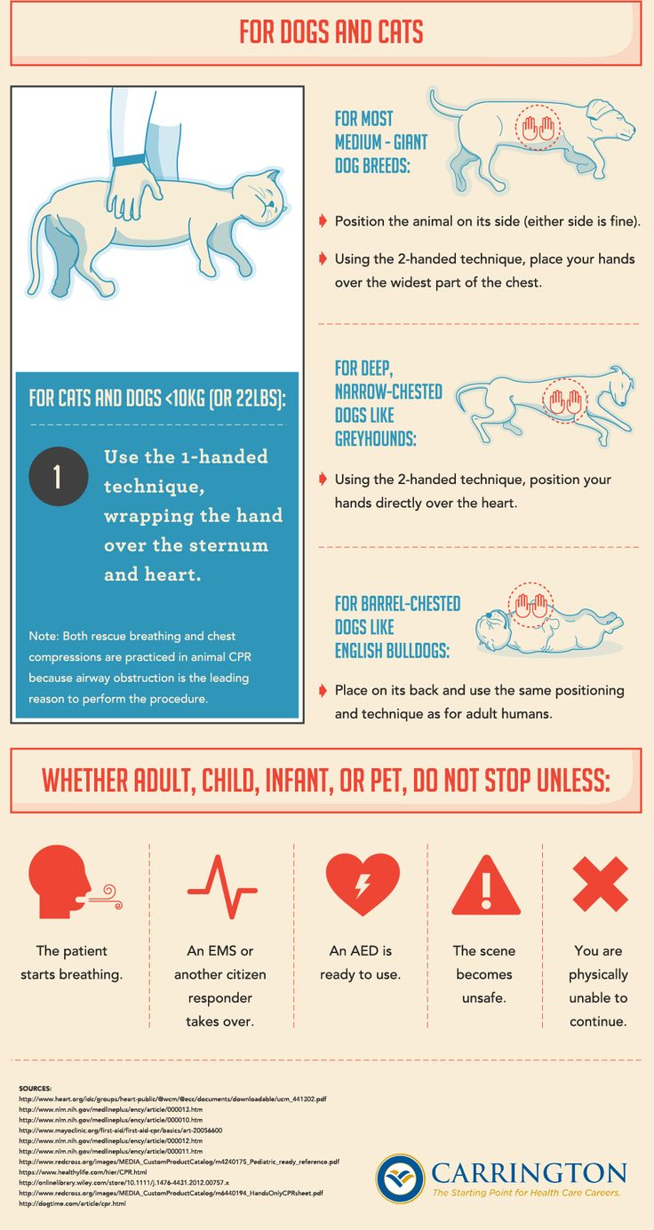 Important Stuff That Every Dude Needs to Know How to Do #CPR