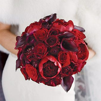 bouquet: cluster of deep red blossoms, including roses, calla lilies and peonies