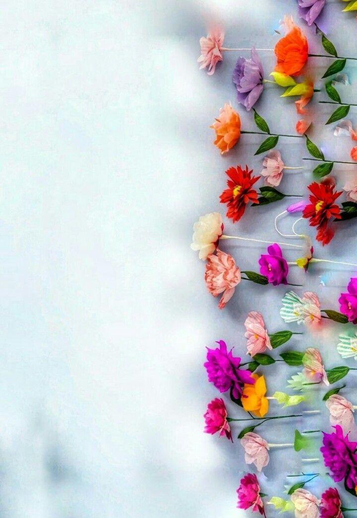 Sfondo Flower Background Wallpaper Flower Phone Wallpaper Flower Wallpaper